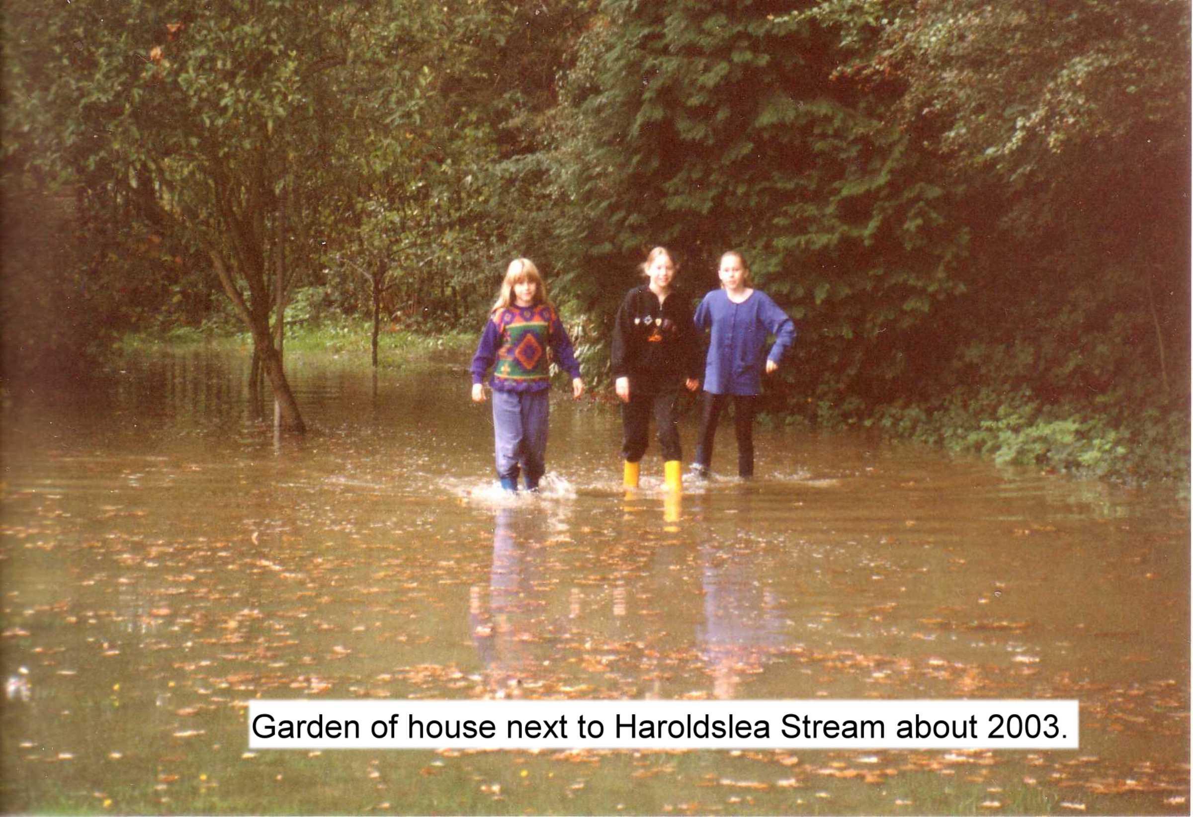 next to haroldslea stream c2003