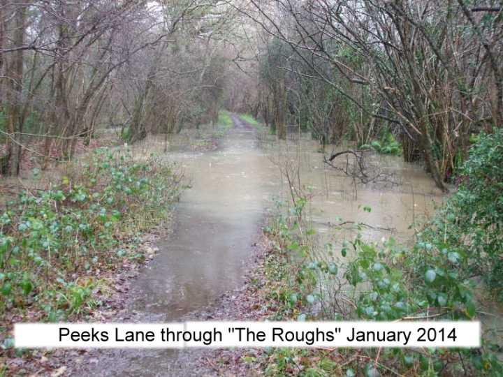 peeks lane through the roughs