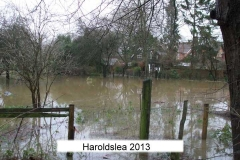harrowsley bungalow paddock 2013