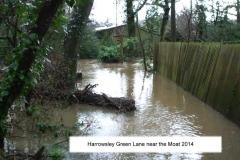 harrowsley green lane near moat