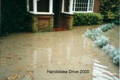 one of many in haroldslea drive 2000