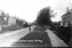meath green lane