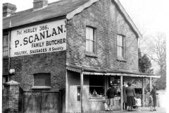 Scanlan 1955