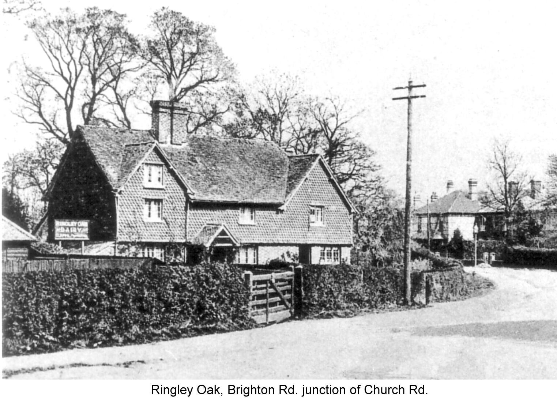 ringley oak