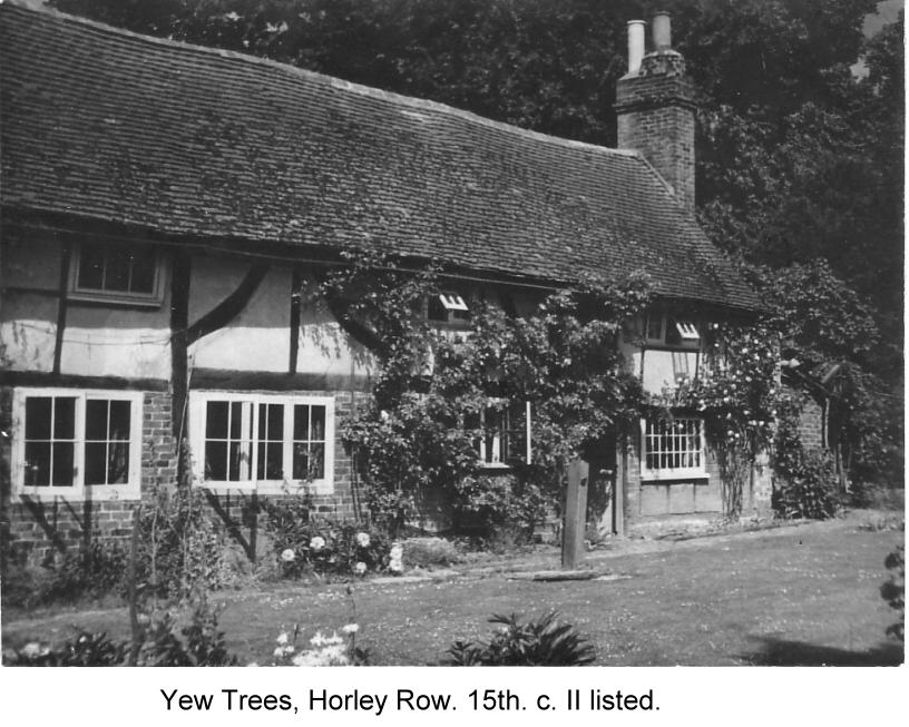yew trees horley row